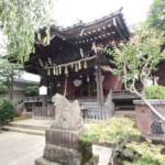 白山神社~あじさいの咲く神社