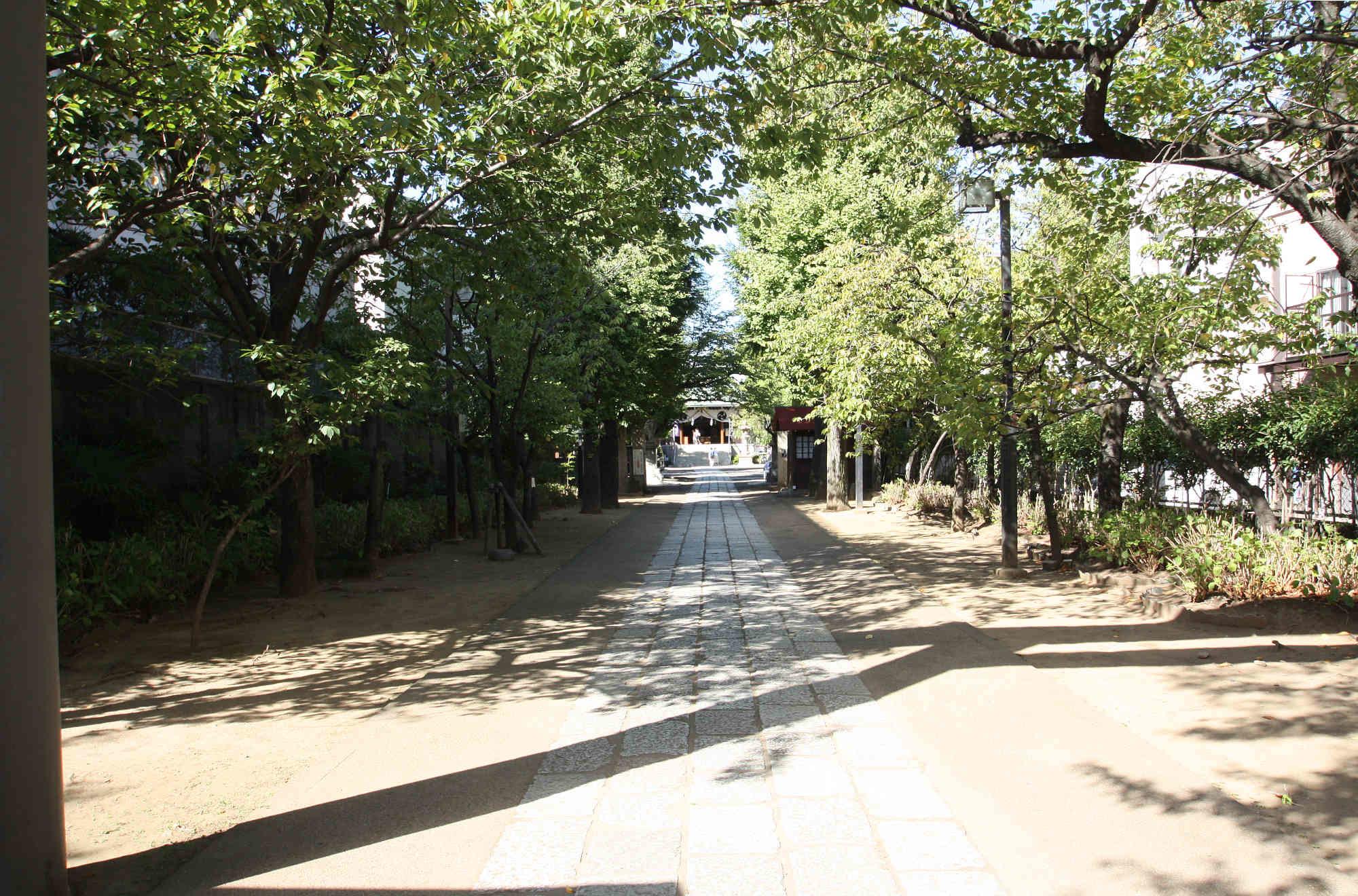 亀戸香取神社の参道