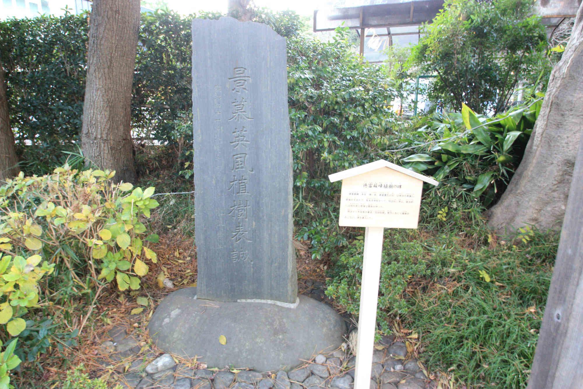 徳富蘇峰植樹の碑