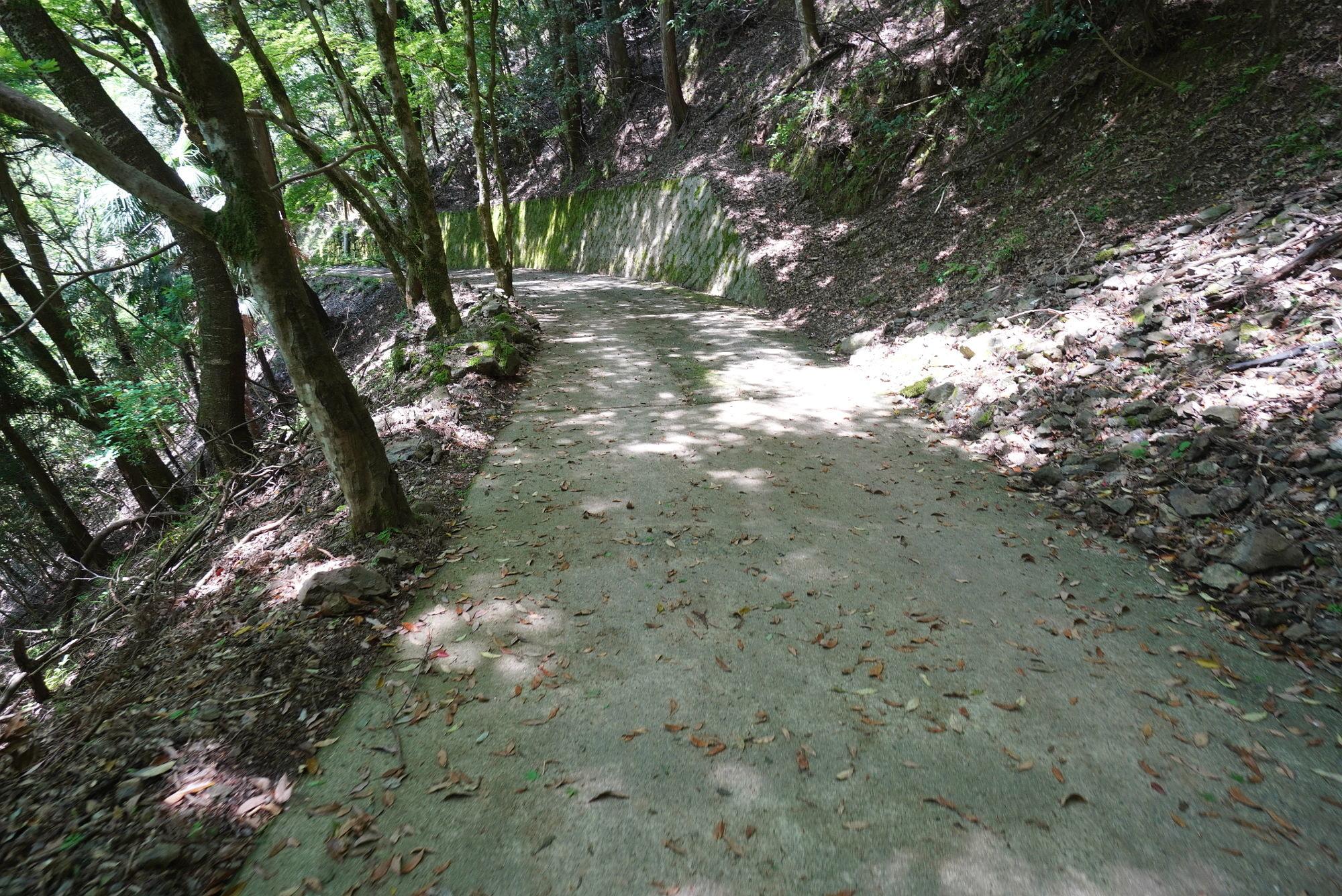 天岩戸神社への道