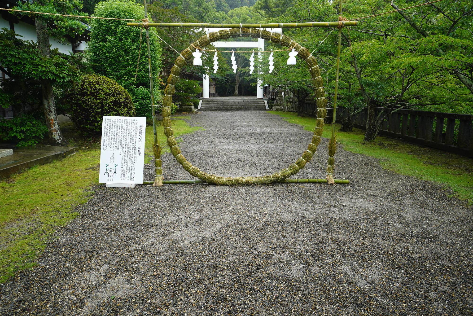安房神社 茅の輪