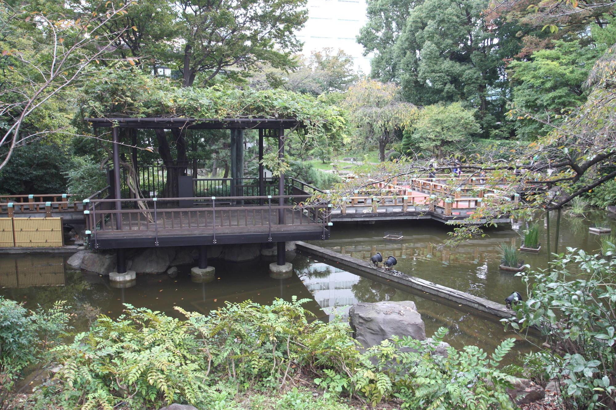 東郷神社の庭