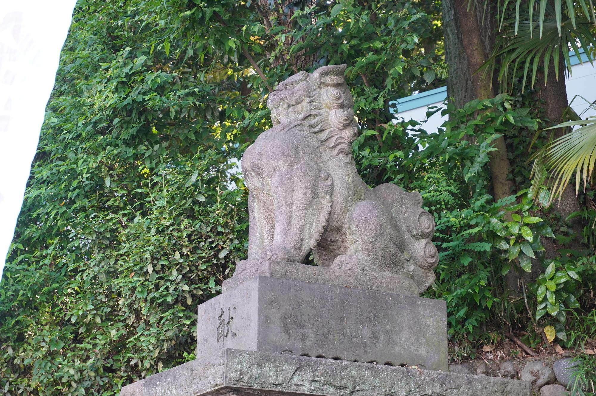 鳥居前の狛犬様(左)