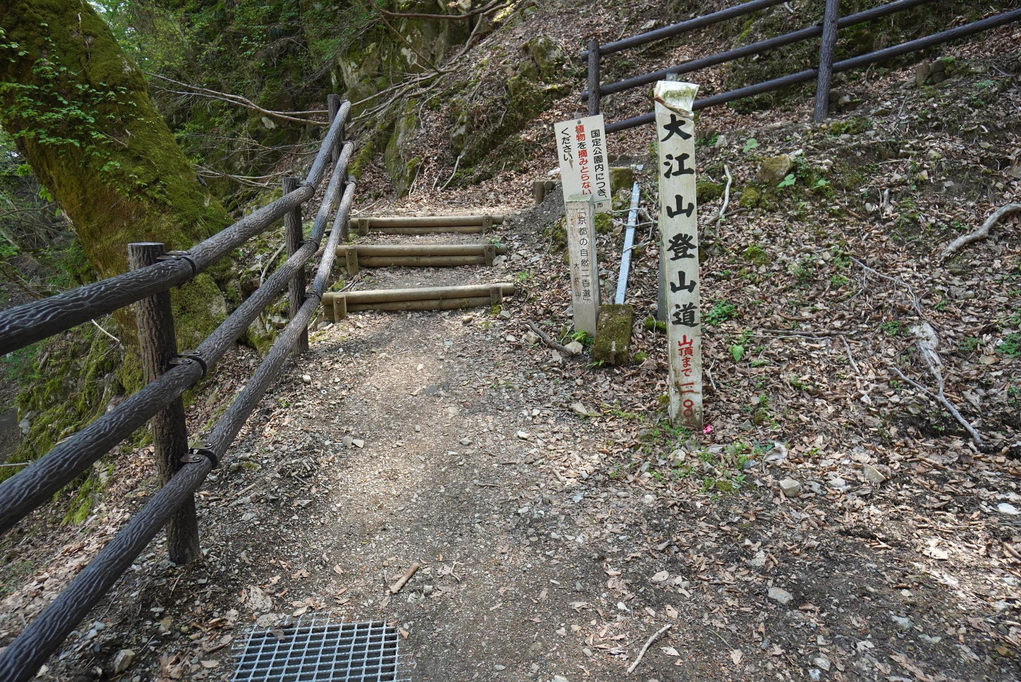 大江山登山道